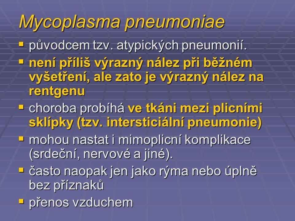 Mycoplasma pneumoniae  původcem tzv.atypických pneumonií.