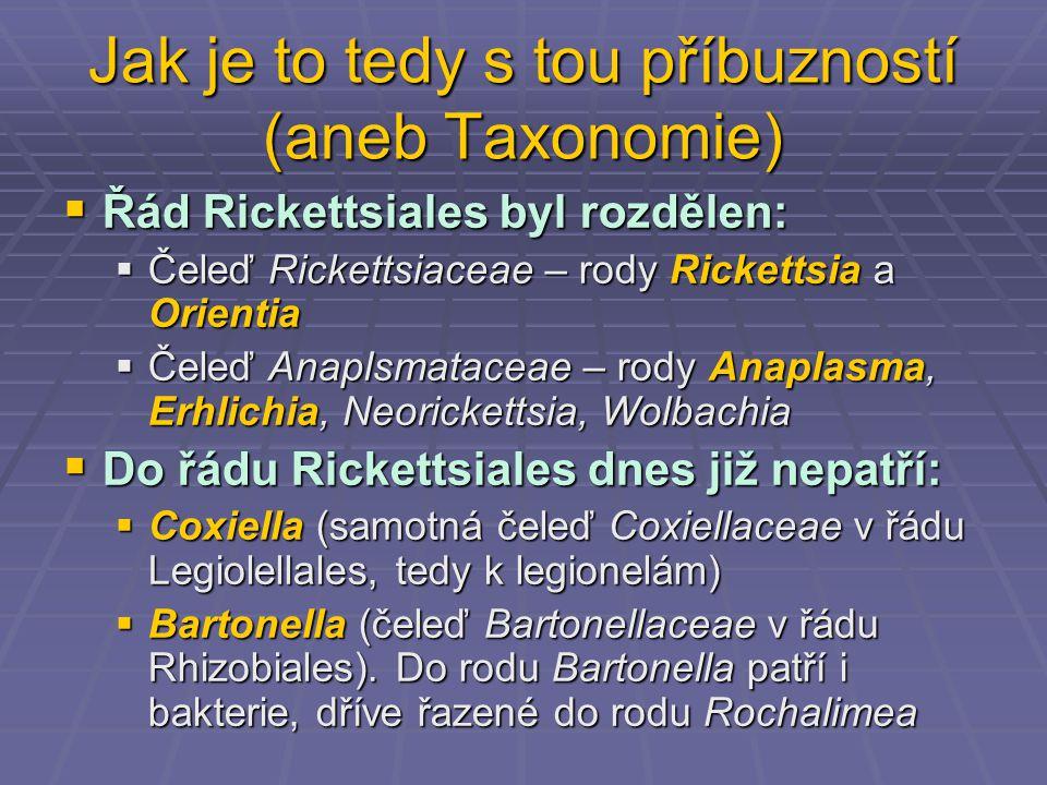 Jak je to tedy s tou příbuzností (aneb Taxonomie)  Řád Rickettsiales byl rozdělen:  Čeleď Rickettsiaceae – rody Rickettsia a Orientia  Čeleď Anaplsmataceae – rody Anaplasma, Erhlichia, Neorickettsia, Wolbachia  Do řádu Rickettsiales dnes již nepatří:  Coxiella (samotná čeleď Coxiellaceae v řádu Legiolellales, tedy k legionelám)  Bartonella (čeleď Bartonellaceae v řádu Rhizobiales).