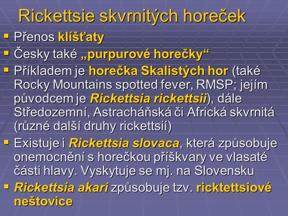"""Rickettsie skvrnitých horeček  Přenos klíšťaty  Česky také """"purpurové horečky  Příkladem je horečka Skalistých hor (také Rocky Mountains spotted fever, RMSP; jejím původcem je Rickettsia rickettsii), dále Středozemní, Astracháňská či Africká skvrnitá (různé další druhy rickettsií)  Existuje i Rickettsia slovaca, která způsobuje onemocnění s horečkou příškvary ve vlasaté části hlavy."""