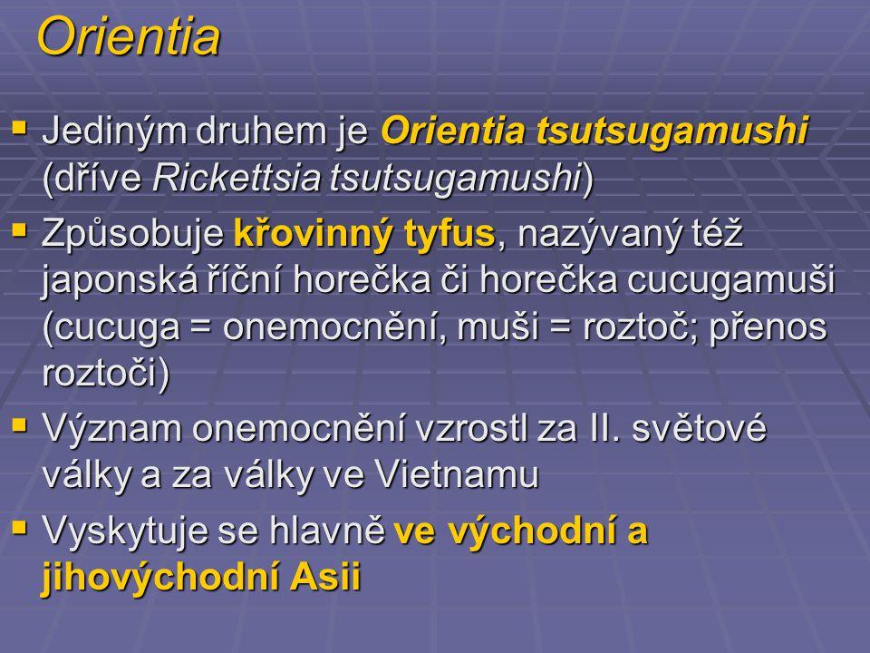 Orientia  Jediným druhem je Orientia tsutsugamushi (dříve Rickettsia tsutsugamushi)  Způsobuje křovinný tyfus, nazývaný též japonská říční horečka či horečka cucugamuši (cucuga = onemocnění, muši = roztoč; přenos roztoči)  Význam onemocnění vzrostl za II.