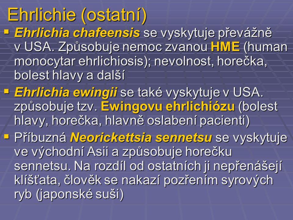 Ehrlichie (ostatní)  Ehrlichia chafeensis se vyskytuje převážně v USA. Způsobuje nemoc zvanou HME (human monocytar ehrlichiosis); nevolnost, horečka,