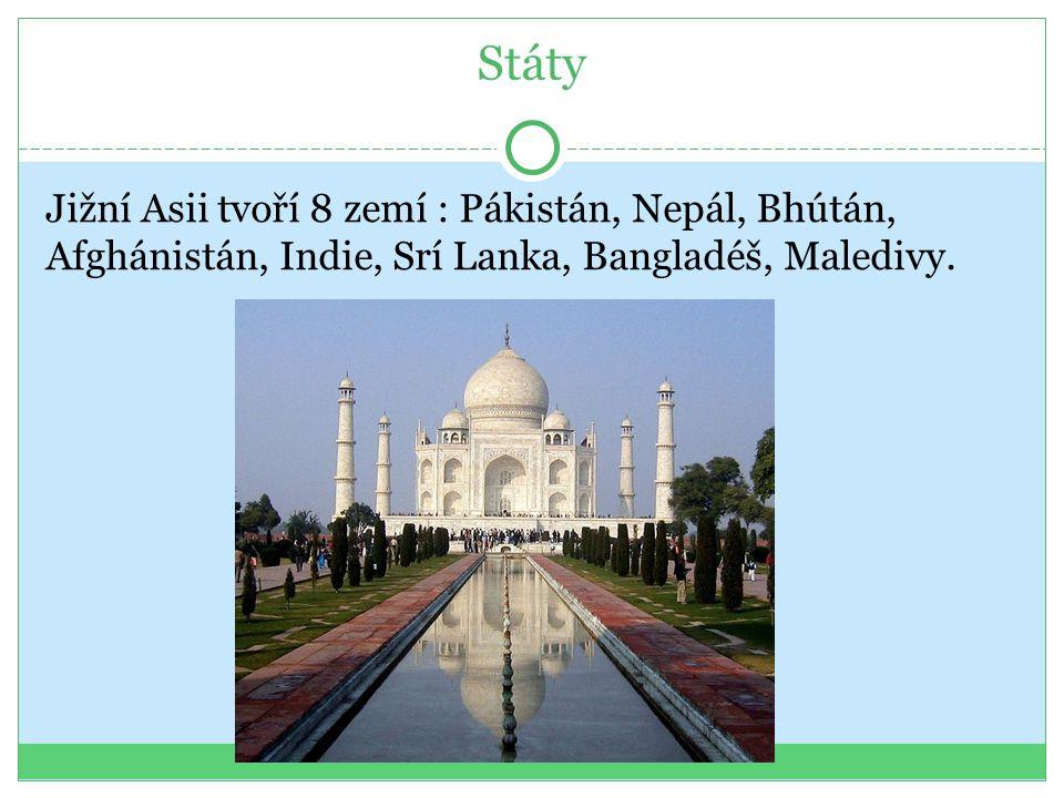 Státy Jižní Asii tvoří 8 zemí : Pákistán, Nepál, Bhútán, Afghánistán, Indie, Srí Lanka, Bangladéš, Maledivy.
