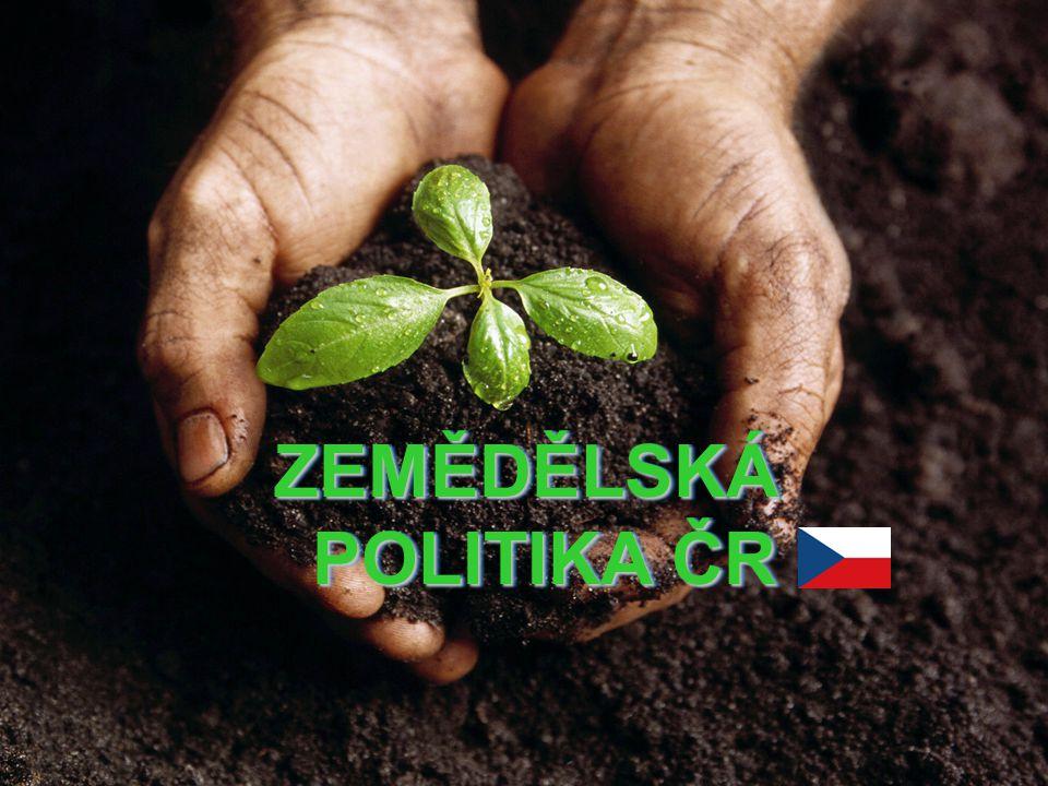 Program SAPARD Zahájen v dubnu 2002 - období příprav ČR, jako kandidátské země, na čerpání finančních prostředků z fondů EU a usnadnění vstupu a napojení do struktur Evr.