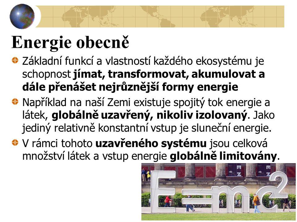 Palivový mix Palivový mix ČR v roce 2010 Uhlí: 29,71% Zemní plyn: 27,88% Topný olej: 0,06% Jádro: 18,54% Voda > 10MW: 4,54% Voda < 10 MW: 4,47% Ostatní OZ: 14,80%