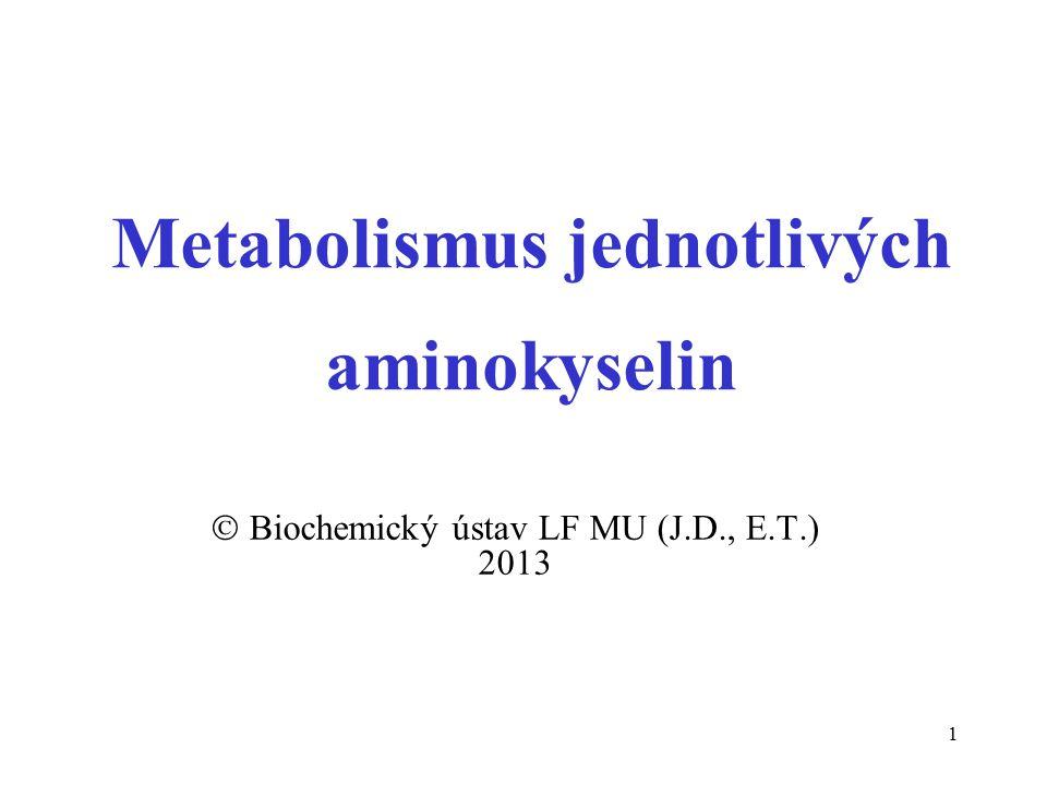 1 Metabolismus jednotlivých aminokyselin  Biochemický ústav LF MU (J.D., E.T.) 2013