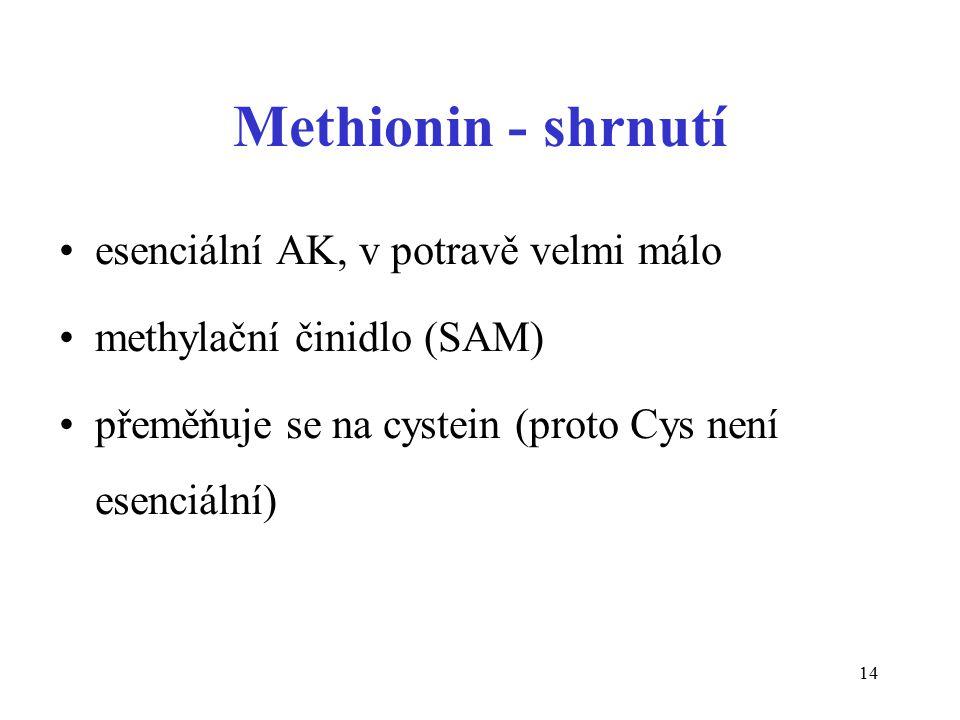 14 Methionin - shrnutí esenciální AK, v potravě velmi málo methylační činidlo (SAM) přeměňuje se na cystein (proto Cys není esenciální)