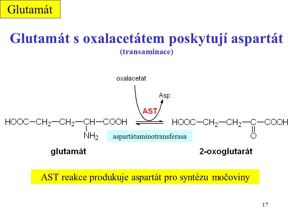 17 Glutamát s oxalacetátem poskytují aspartát (transaminace) AST reakce produkuje aspartát pro syntézu močoviny aspartátaminotransferasa Glutamát
