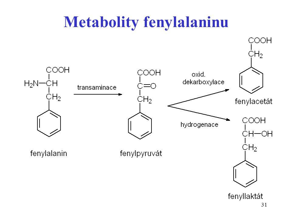 31 Metabolity fenylalaninu