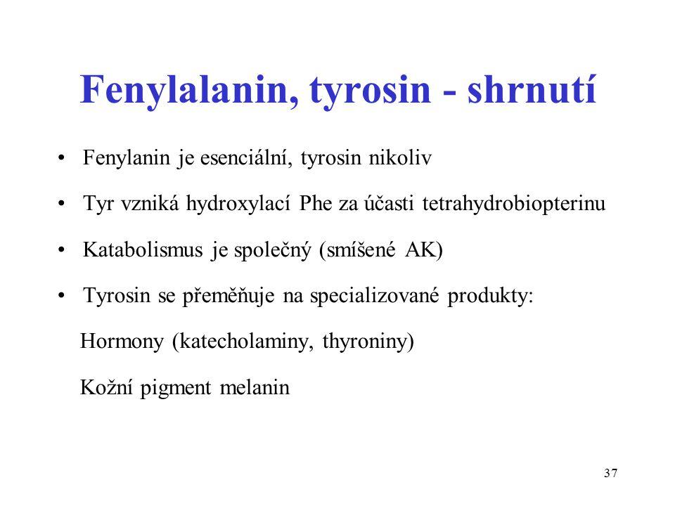 37 Fenylalanin, tyrosin - shrnutí Fenylanin je esenciální, tyrosin nikoliv Tyr vzniká hydroxylací Phe za účasti tetrahydrobiopterinu Katabolismus je s