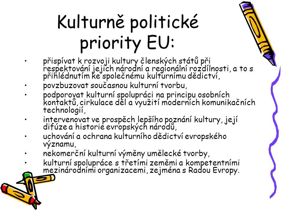 Kulturně politické priority EU: přispívat k rozvoji kultury členských států při respektování jejich národní a regionální rozdílnosti, a to s přihlédnutím ke společnému kulturnímu dědictví, povzbuzovat současnou kulturní tvorbu, podporovat kulturní spolupráci na principu osobních kontaktů, cirkulace děl a využití moderních komunikačních technologií, intervenovat ve prospěch lepšího poznání kultury, její difúze a historie evropských národů, uchování a ochrana kulturního dědictví evropského významu, nekomerční kulturní výměny umělecké tvorby, kulturní spolupráce s třetími zeměmi a kompetentními mezinárodními organizacemi, zejména s Radou Evropy.