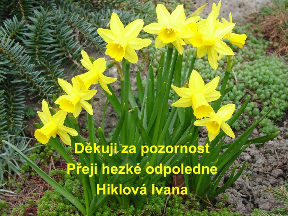 Děkuji za pozornost Přeji hezké odpoledne Hiklová Ivana