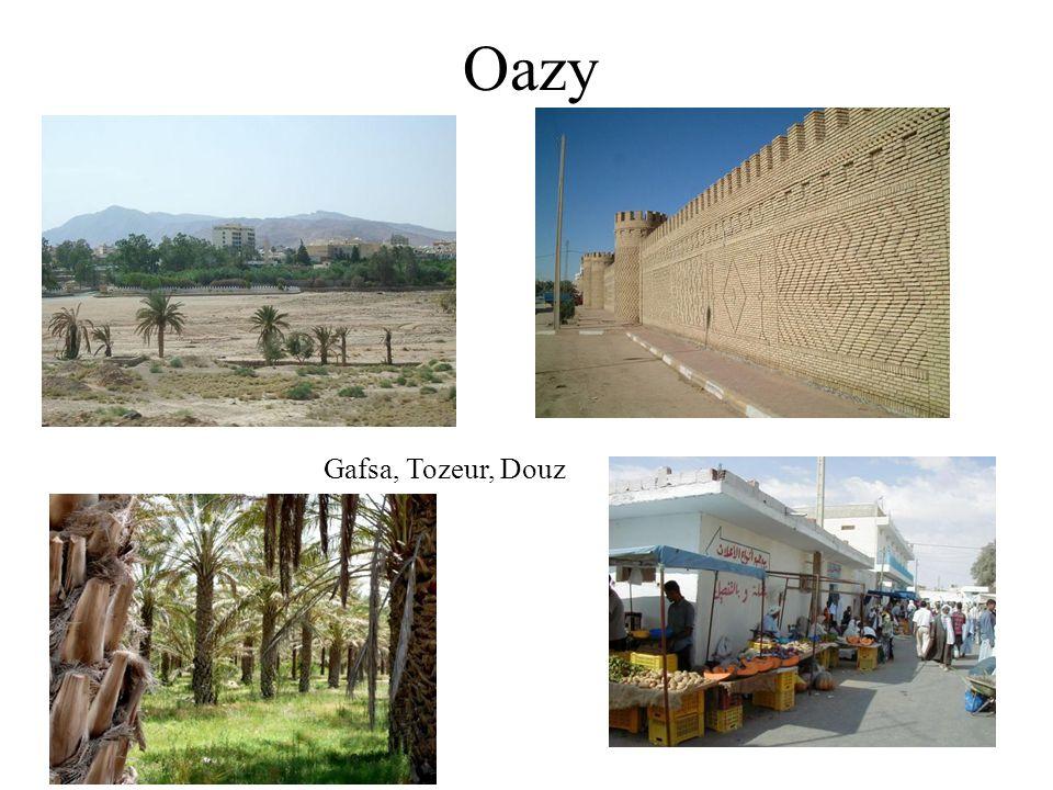 Oazy Gafsa, Tozeur, Douz