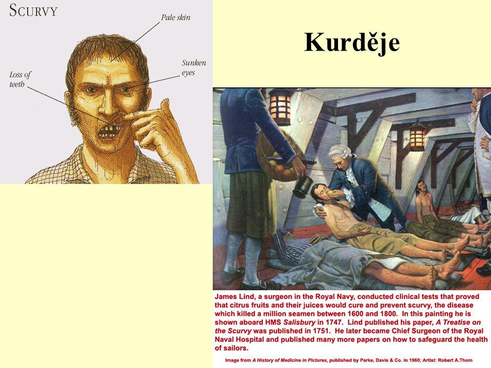 Kurděje