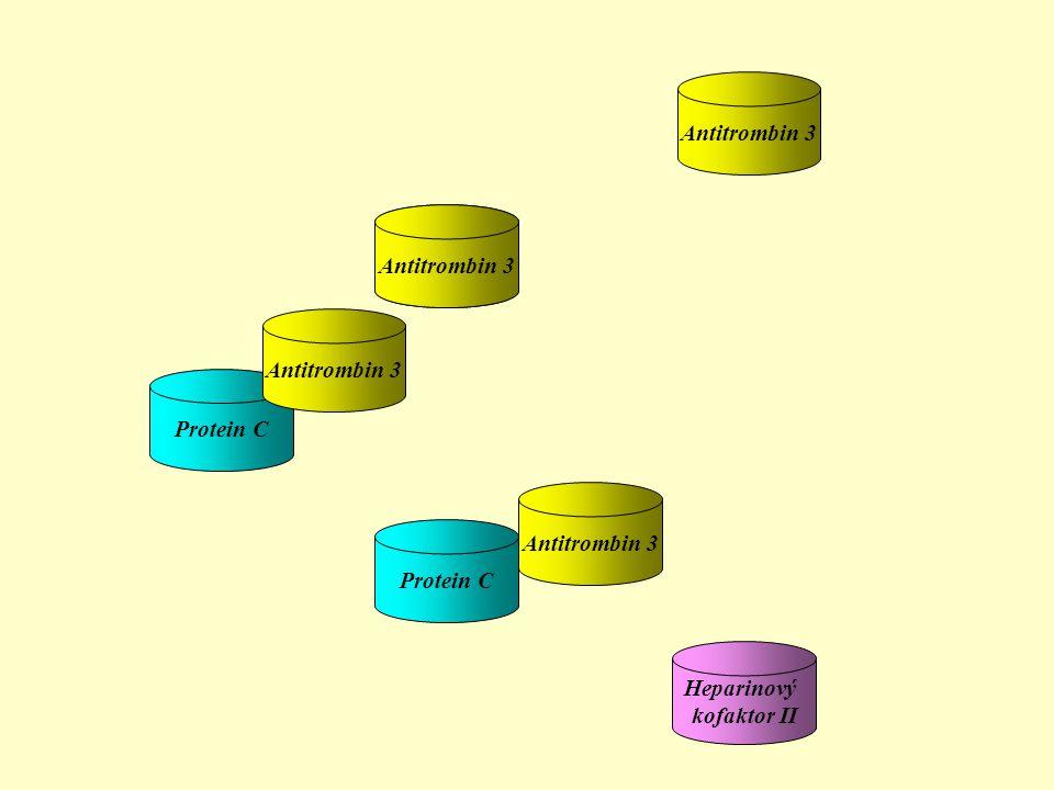 Protein C Antitrombin 3 Heparinový kofaktor II Antitrombin 3 Protein C