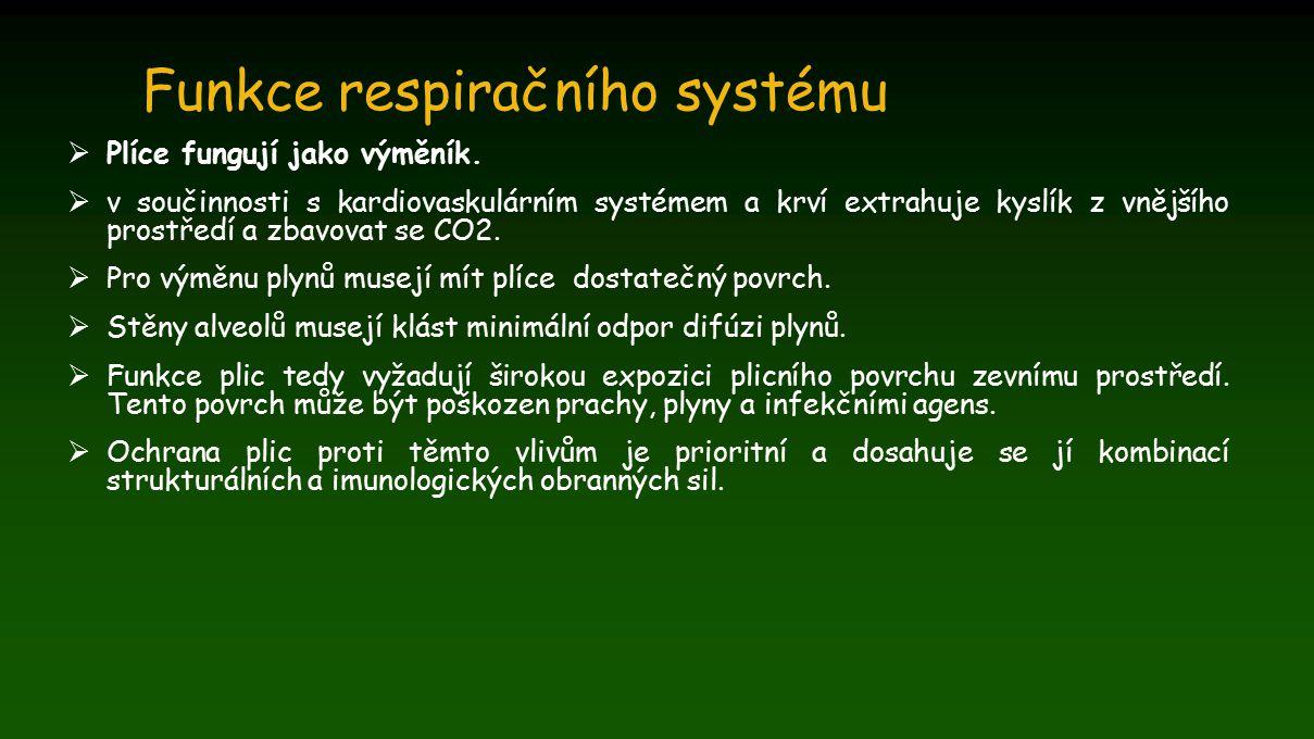 Funkce respiračního systému  Plíce fungují jako výměník.  v součinnosti s kardiovaskulárním systémem a krví extrahuje kyslík z vnějšího prostředí a