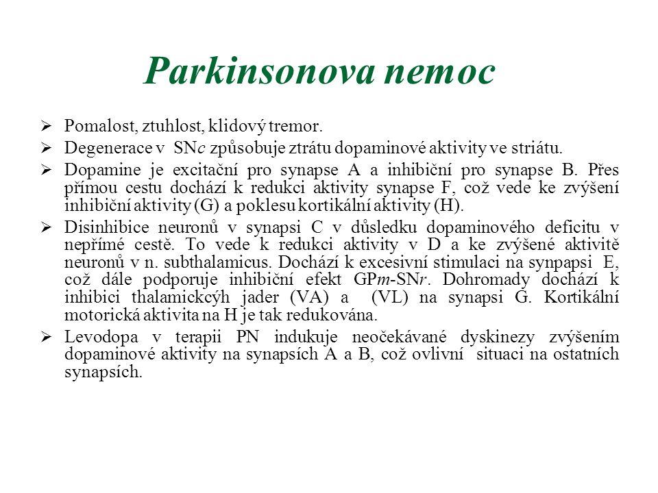 Parkinsonova nemoc  Pomalost, ztuhlost, klidový tremor.  Degenerace v SNc způsobuje ztrátu dopaminové aktivity ve striátu.  Dopamine je excitační p