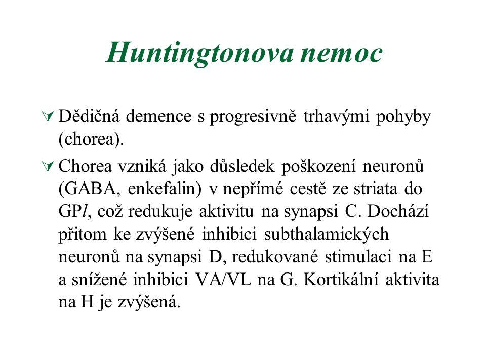 Huntingtonova nemoc  Dědičná demence s progresivně trhavými pohyby (chorea).  Chorea vzniká jako důsledek poškození neuronů (GABA, enkefalin) v nepř
