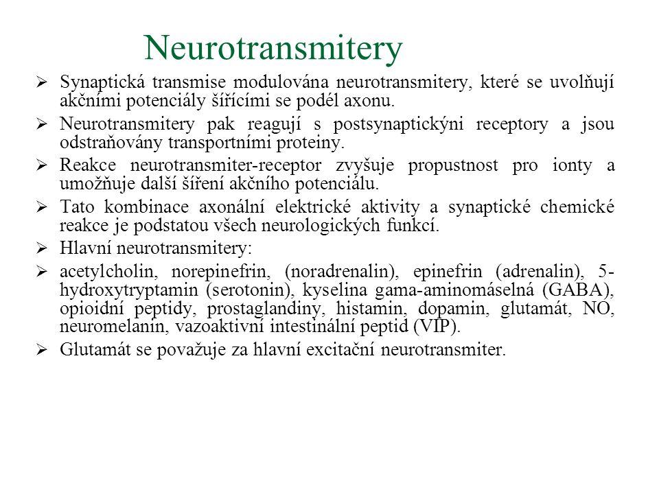 Neurotransmitery  Synaptická transmise modulována neurotransmitery, které se uvolňují akčními potenciály šířícími se podél axonu.  Neurotransmitery