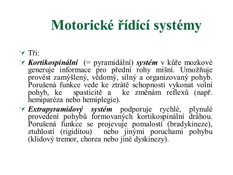 Klasifikace tremoru  Celkem až 20 typů  Esenciální tremor Esenciální tremor  Parkinsonský třes Parkinsonský třes  klidový  Dystonický tremor Dystonic  Hypoglykémie  Psychogenní  Ortostatický  Fyziologický