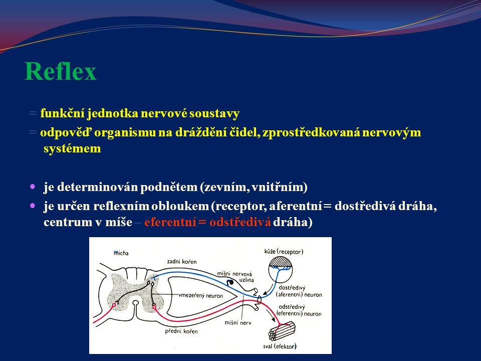 Reflex = funkční jednotka nervové soustavy = odpověď organismu na dráždění čidel, zprostředkovaná nervovým systémem je determinován podnětem (zevním,
