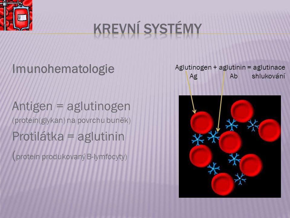 Imunohematologie Antigen = aglutinogen (protein(glykan) na povrchu buněk) Protilátka = aglutinin ( protein produkovaný B-lymfocyty) Aglutinogen + aglutinin = aglutinace Ag Ab shlukování