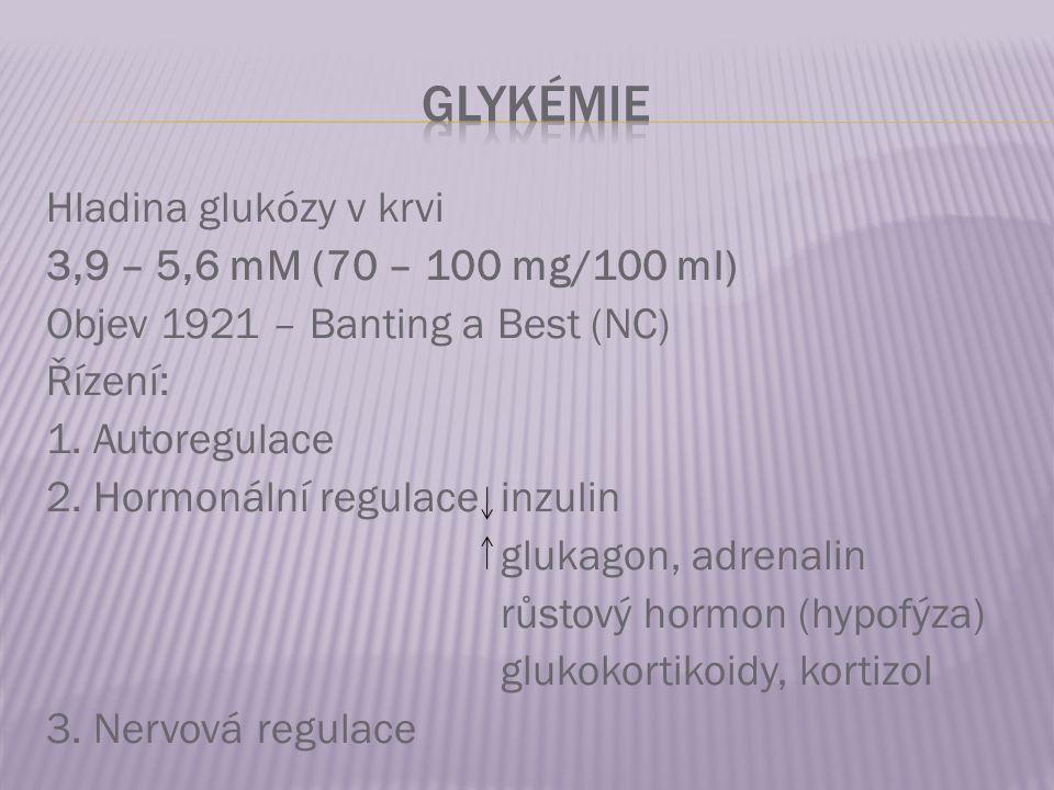 Hladina glukózy v krvi 3,9 – 5,6 mM (70 – 100 mg/100 ml) Objev 1921 – Banting a Best (NC) Řízení: 1. Autoregulace 2. Hormonální regulace inzulin gluka