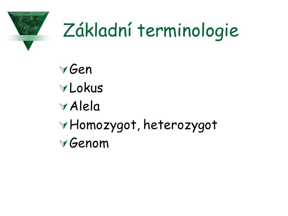 Základní terminologie  Gen  Lokus  Alela  Homozygot, heterozygot  Genom