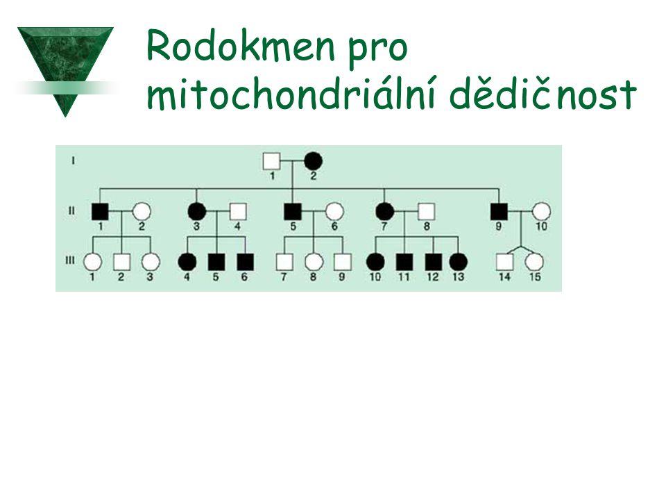 Rodokmen pro mitochondriální dědičnost