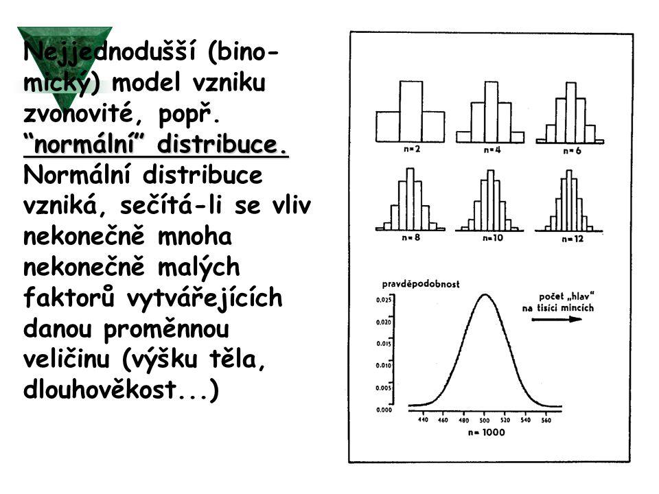 """""""normální"""" distribuce. Nejjednodušší (bino- mický) model vzniku zvonovité, popř. """"normální"""" distribuce. Normální distribuce vzniká, sečítá-li se vliv"""