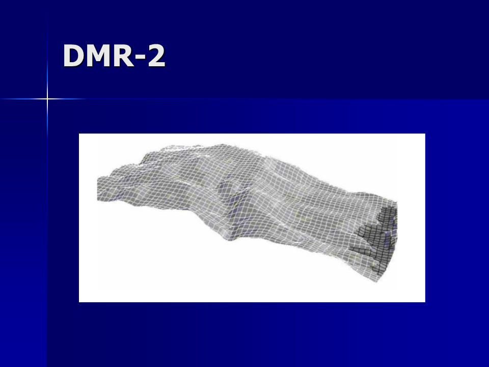 DMR-2