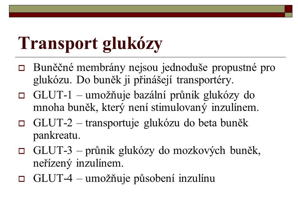 Transport glukózy  Buněčné membrány nejsou jednoduše propustné pro glukózu. Do buněk ji přinášejí transportéry.  GLUT-1 – umožňuje bazální průnik gl