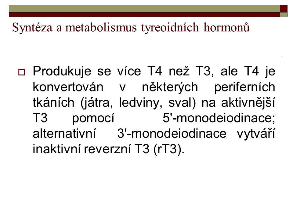 Syntéza a metabolismus tyreoidních hormonů  Produkuje se více T4 než T3, ale T4 je konvertován v některých periferních tkáních (játra, ledviny, sval)