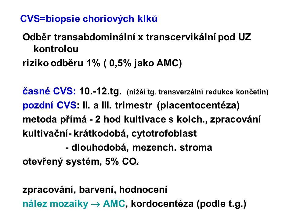 CVS=biopsie choriových klků Odběr transabdominální x transcervikální pod UZ kontrolou riziko odběru 1% ( 0,5% jako AMC) časné CVS: 10.-12.tg. (nižší t