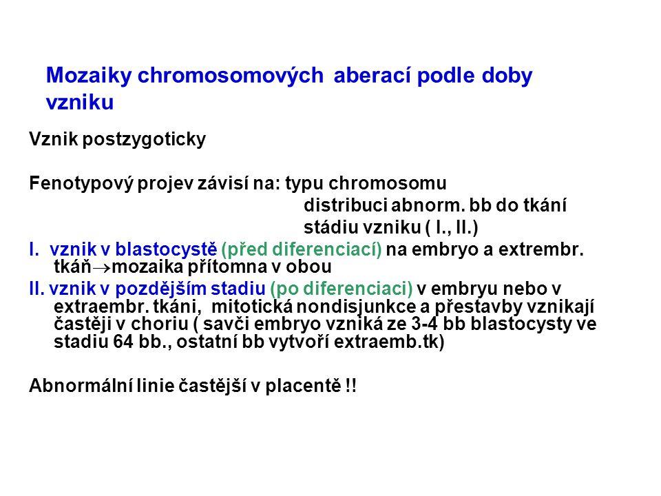 Mozaiky chromosomových aberací podle doby vzniku Vznik postzygoticky Fenotypový projev závisí na: typu chromosomu distribuci abnorm. bb do tkání stádi