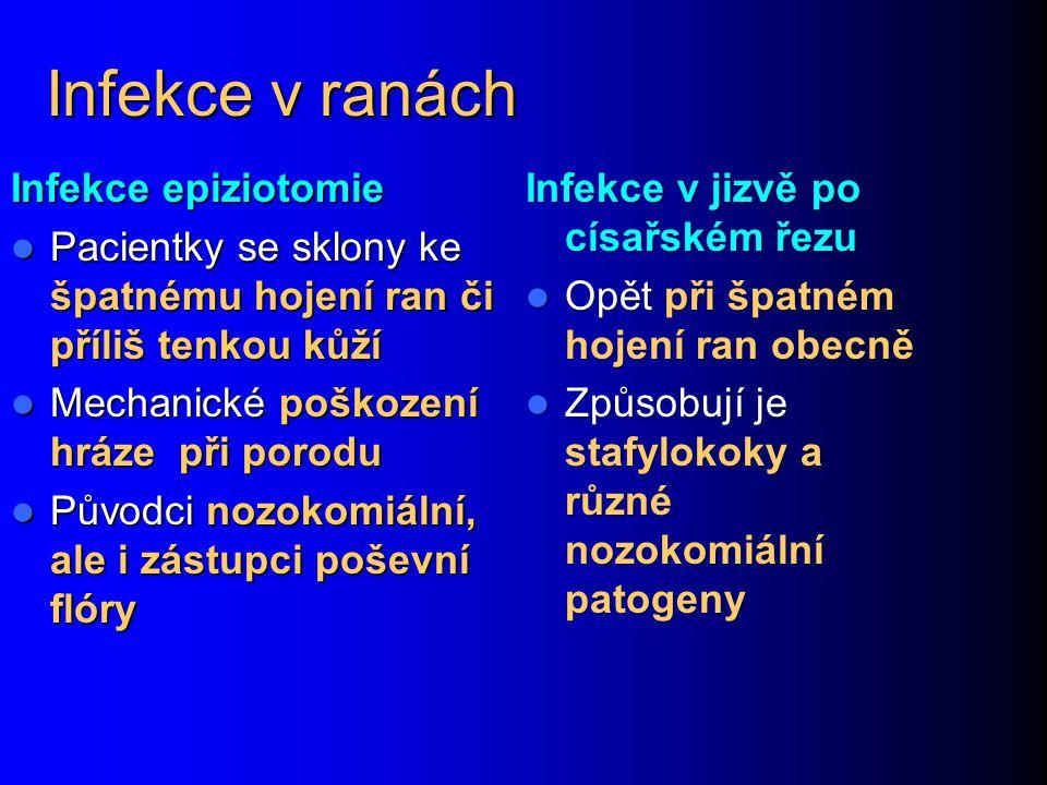 Infekce v ranách Infekce epiziotomie Pacientky se sklony ke špatnému hojení ran či příliš tenkou kůží Pacientky se sklony ke špatnému hojení ran či př
