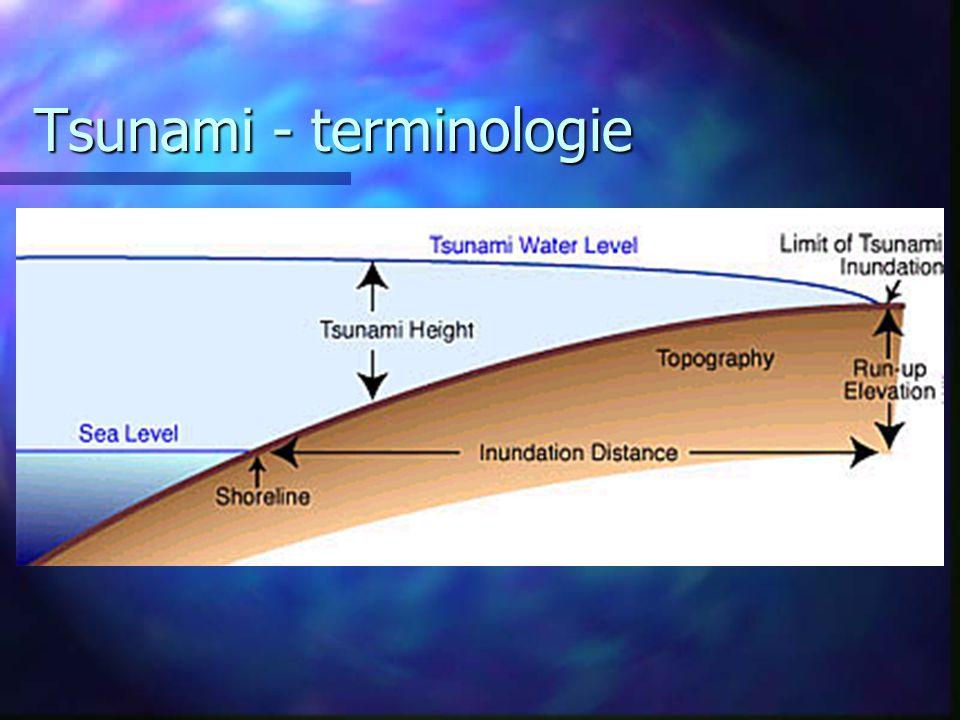Tsunami - terminologie