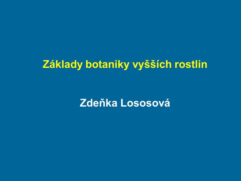Základy botaniky vyšších rostlin Zdeňka Lososová