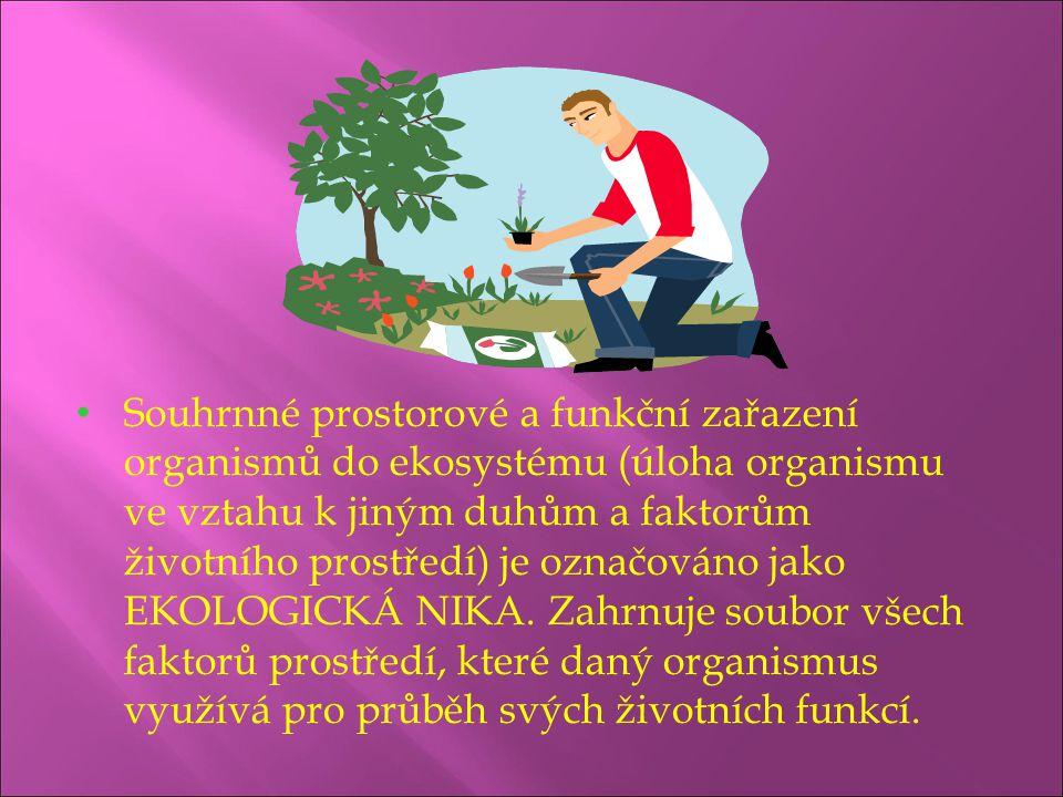  půda vzniká zvětráváním litosféry (hornin a nerostů) a působením půdotvorných činitelů, např.