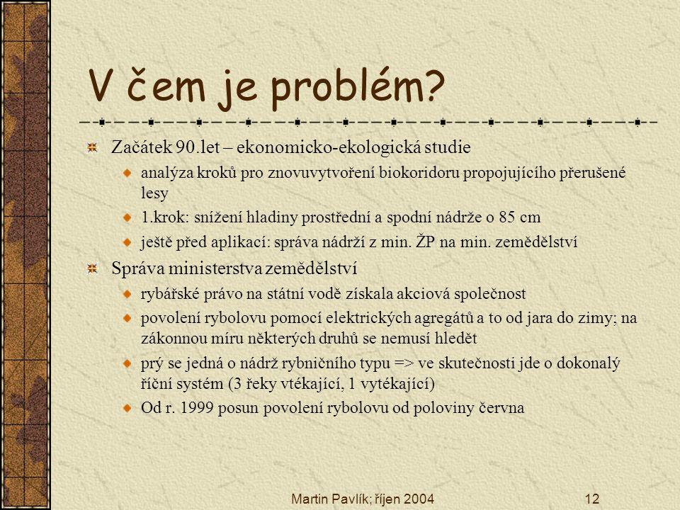 Martin Pavlík; říjen 200412 V čem je problém? Začátek 90.let – ekonomicko-ekologická studie analýza kroků pro znovuvytvoření biokoridoru propojujícího