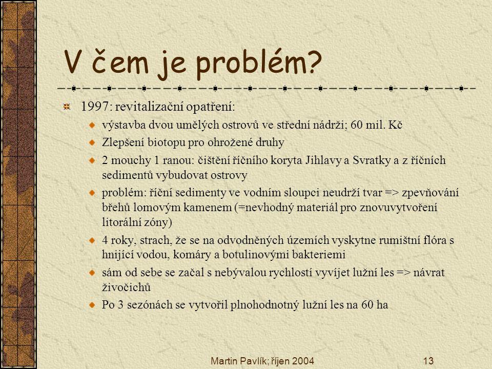Martin Pavlík; říjen 200413 V čem je problém? 1997: revitalizační opatření: výstavba dvou umělých ostrovů ve střední nádrži; 60 mil. Kč Zlepšení bioto
