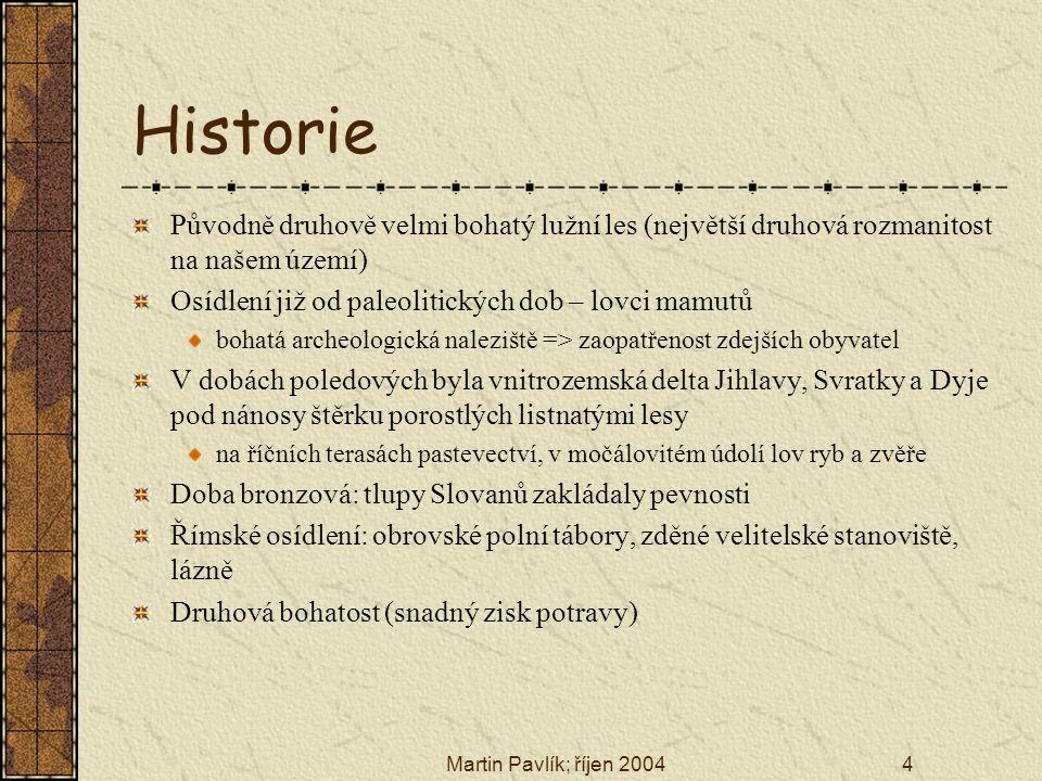 Martin Pavlík; říjen 20044 Historie Původně druhově velmi bohatý lužní les (největší druhová rozmanitost na našem území) Osídlení již od paleolitickýc