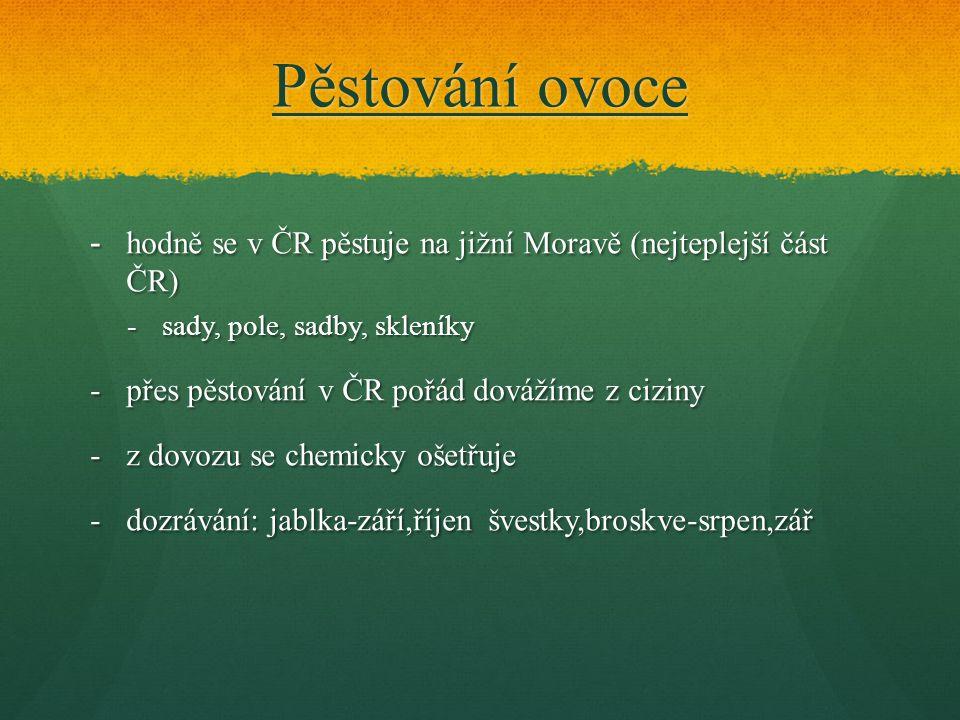 Pěstování ovoce -hodně se v ČR pěstuje na jižní Moravě (nejteplejší část ČR) -sady, pole, sadby, skleníky -přes pěstování v ČR pořád dovážíme z ciziny