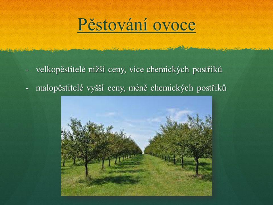 Pěstování ovoce -velkopěstitelé nižší ceny, více chemických postřiků -malopěstitelé vyšší ceny, méně chemických postřiků