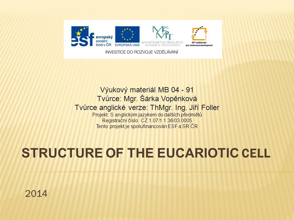 STRUCTURE OF THE EUCARIOTIC CELL 2014 Výukový materiál MB 04 - 91 Tvůrce: Mgr.