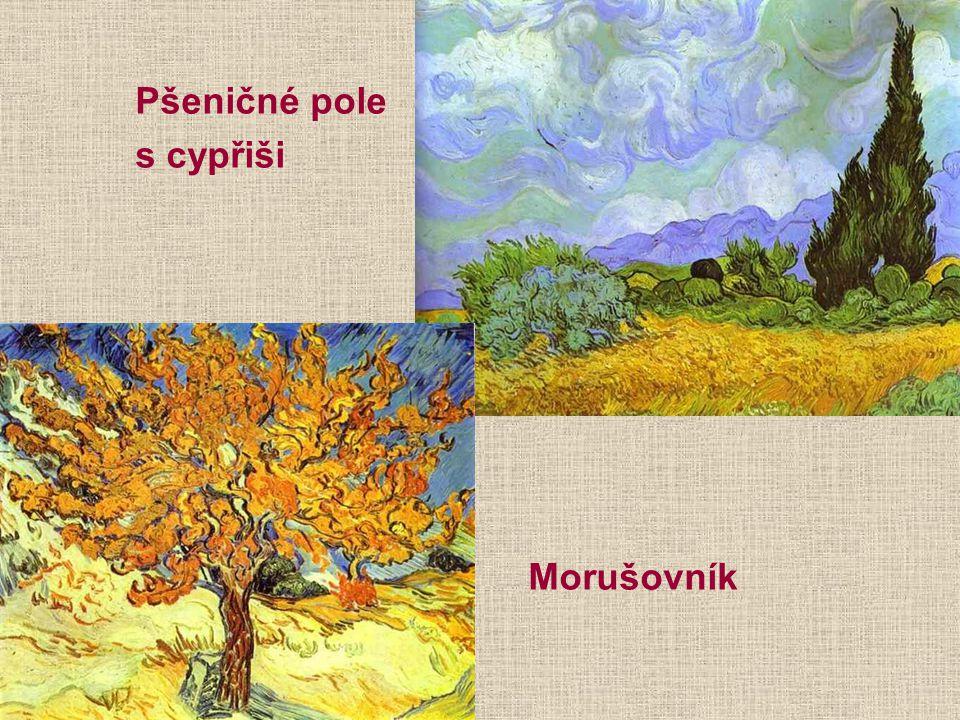 Pšeničné pole s cypřiši Morušovník