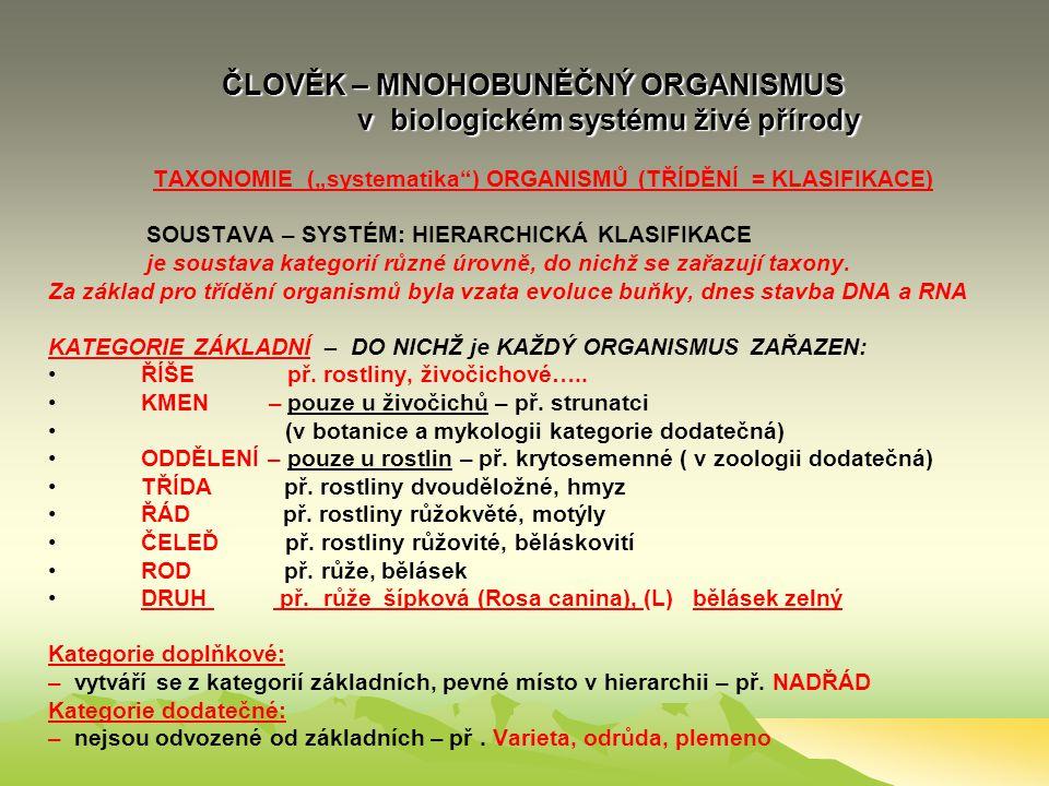 Systém živé přírody z pohledu člověka systém biologický (taxonomický), ekologický a uživatelský Systém živé přírody z pohledu člověka systém biologick