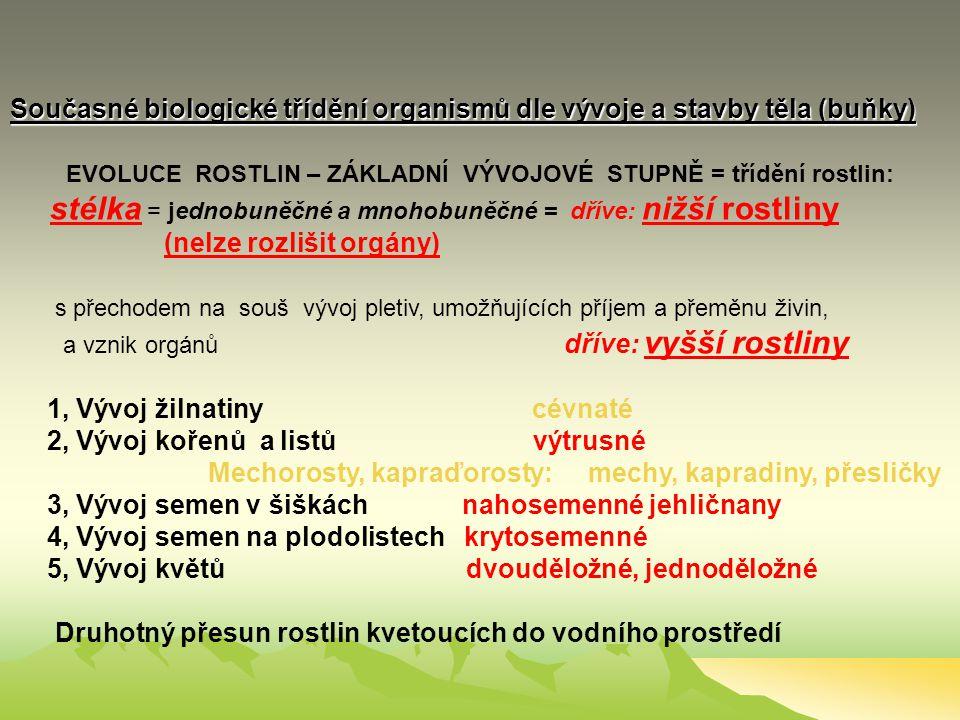 PŘIROZENÝ SYSTÉM ŽIVÉ PŘÍRODY NADŘÍŠE: Nebuněční (Subcelulata) př.