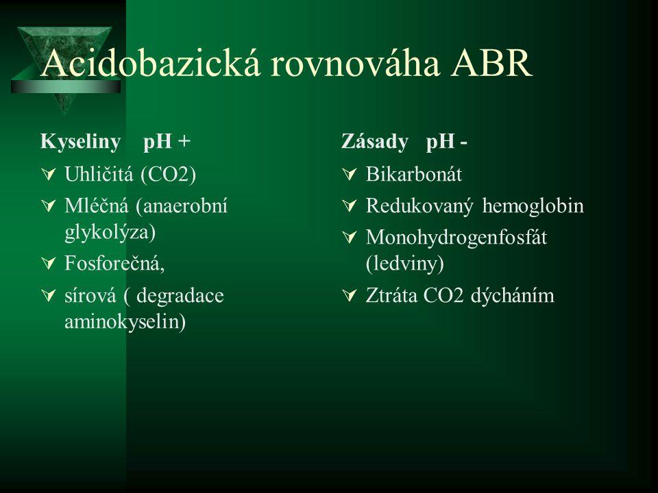 Acidobazická rovnováha ABR Kyseliny pH +  Uhličitá (CO2)  Mléčná (anaerobní glykolýza)  Fosforečná,  sírová ( degradace aminokyselin) Zásady pH -