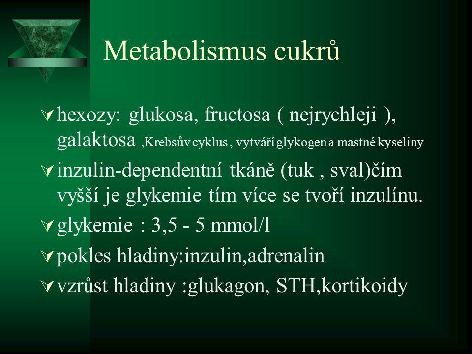 Metabolismus cukrů  hexozy: glukosa, fructosa ( nejrychleji ), galaktosa,Krebsův cyklus, vytváří glykogen a mastné kyseliny  inzulin-dependentní tká
