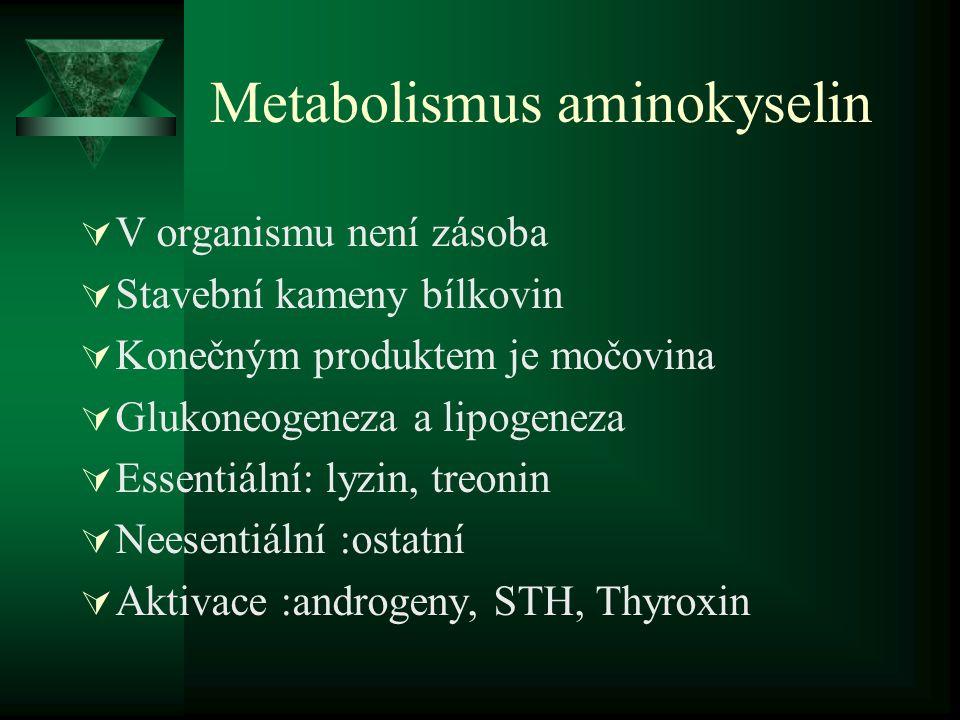 Metabolismus aminokyselin  V organismu není zásoba  Stavební kameny bílkovin  Konečným produktem je močovina  Glukoneogeneza a lipogeneza  Essent